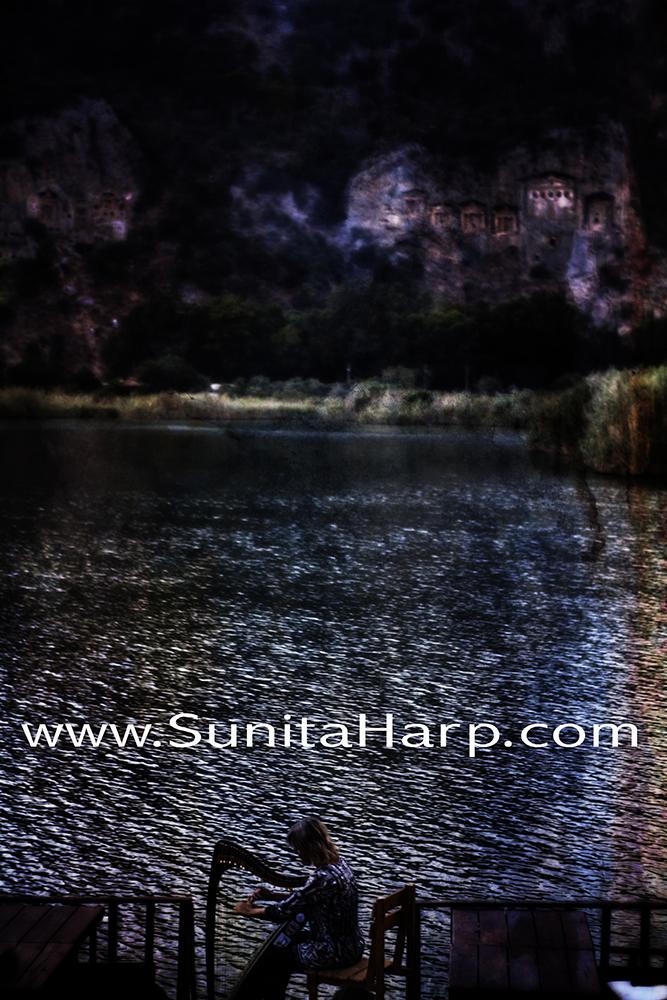 Sunita_Harfe_PPS_1000_AndreaNagel